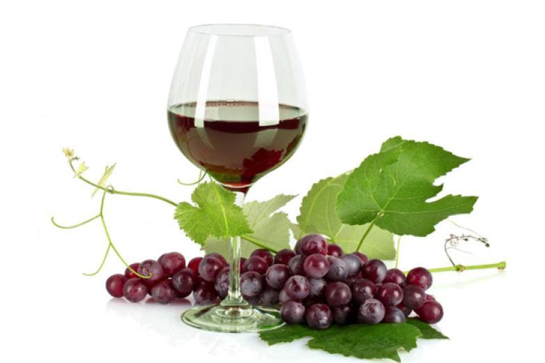 浩源酒莊葡萄酒加盟