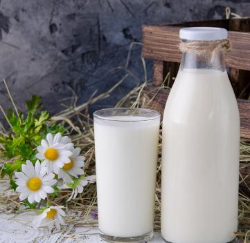 爱宝牛奶伴侣
