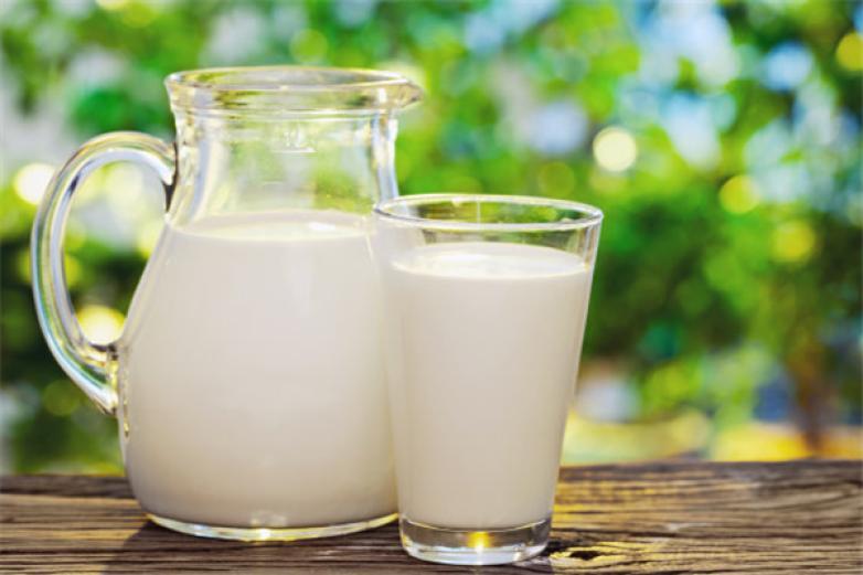 爱宝牛奶伴侣加盟