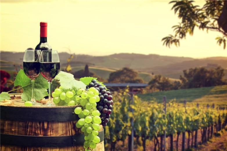 卡诺莎葡萄酒加盟