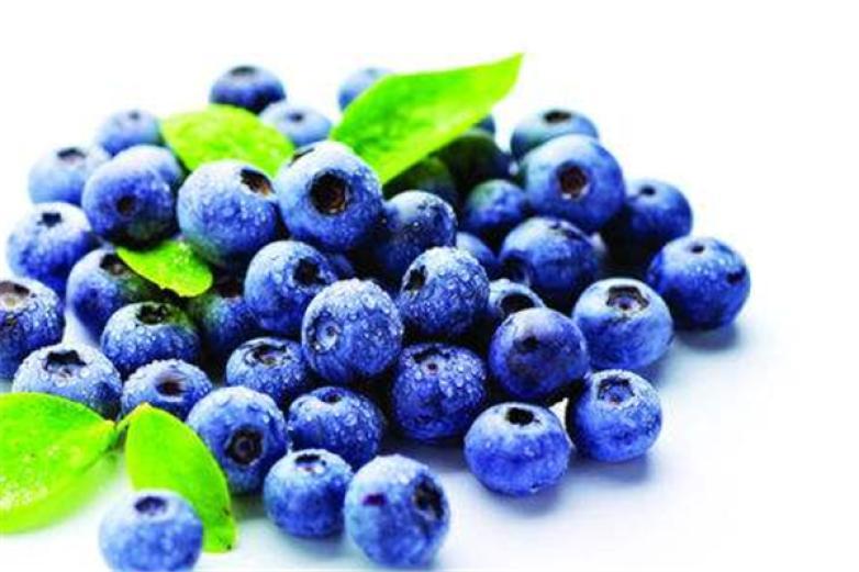 蓝莓之约加盟