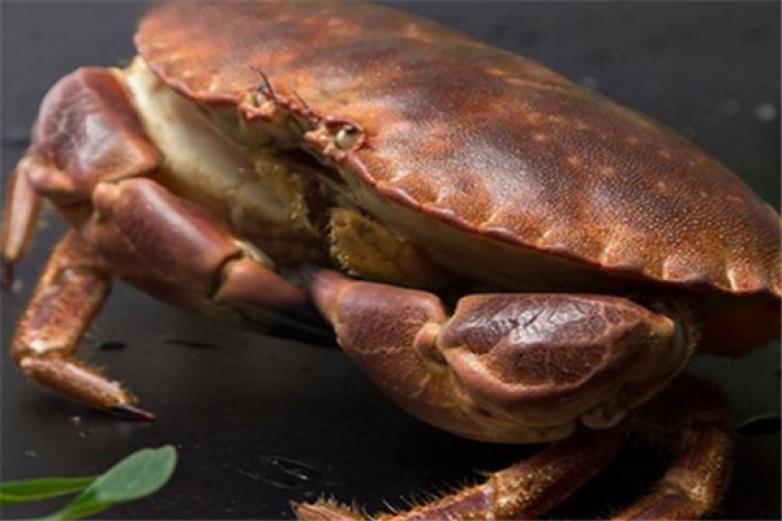 蟹寶蟹業加盟