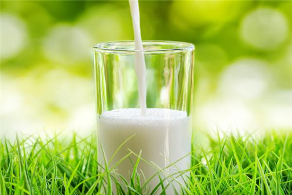 花园牛奶加盟