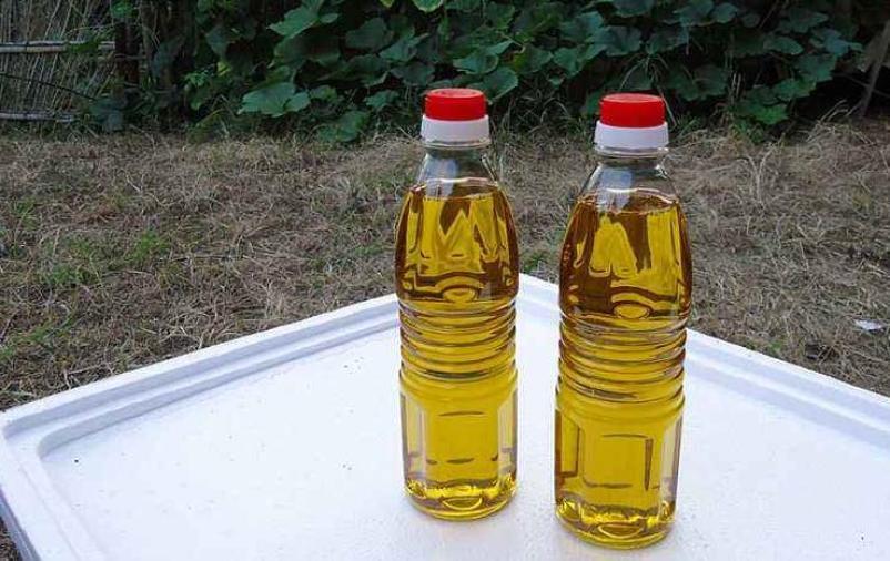 圣基葵花籽油加盟