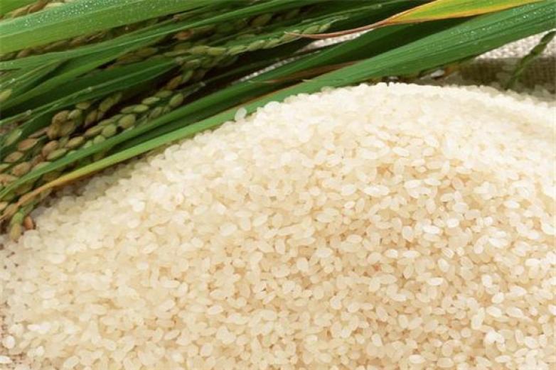 大糧米業加盟